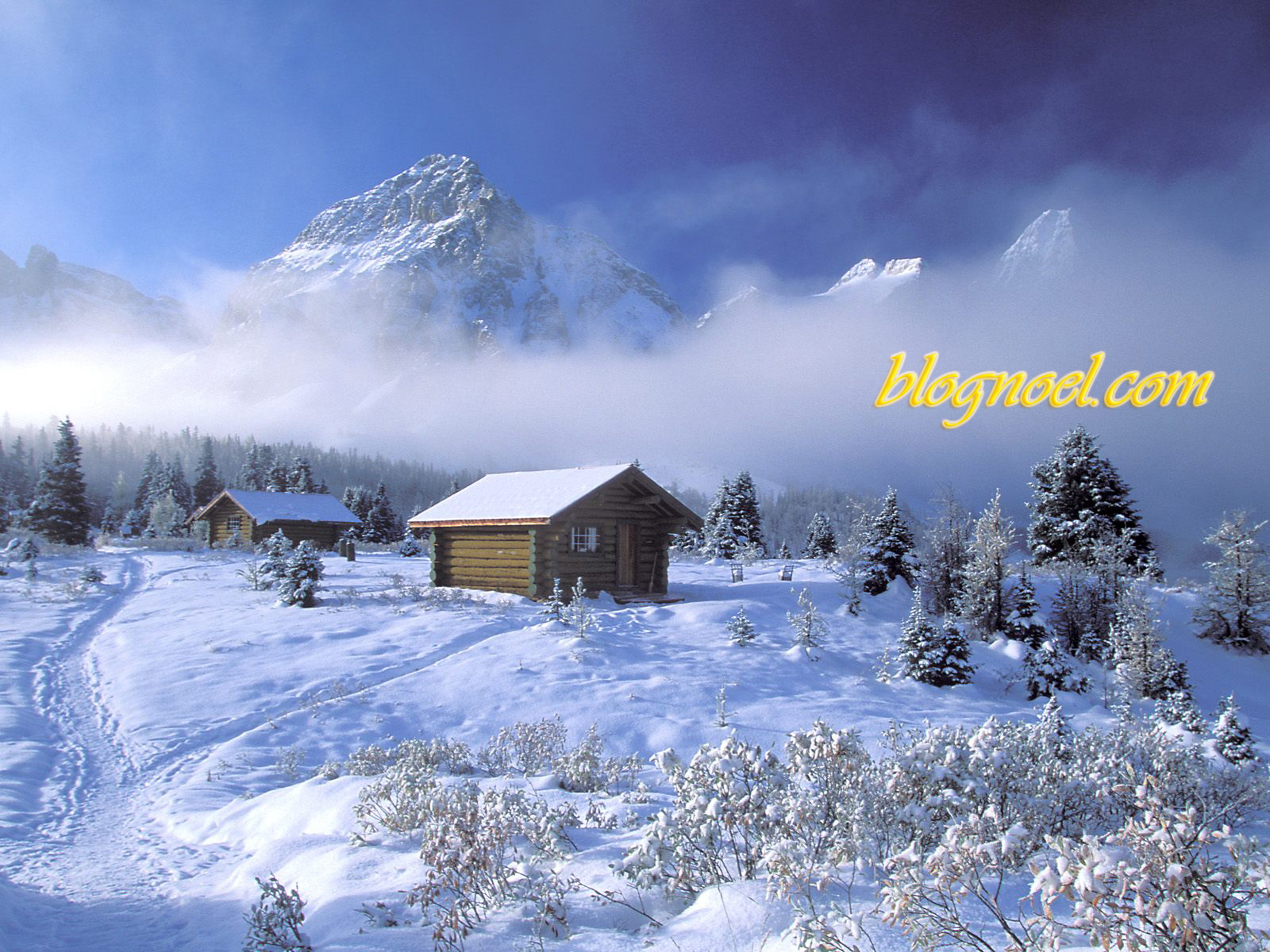 Vidéo des paysages suisse avec la neige